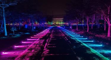 文旅景观引流灯光之网红步道灯